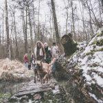 Malinois dans les bois