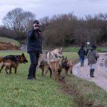 Promeneurs avec chiens