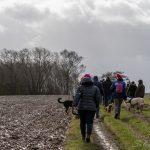 Personnes se promenant dans la campagne