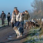 Groupe de proneurs canin