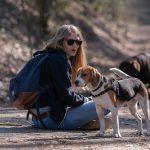 Beagle avec sa maîtresse