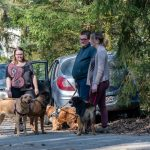 Promeneurs prêts pour une balade canine avec Julie Willems