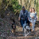 Balade canine dans les bois avec Julie Willems