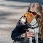 Maître faisant un bisous à un son beagle