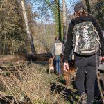 Baladeurs en forêt