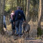 forêts et promenade avec Julie Willems