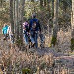 Forêt et promenade avec animal behaviour center