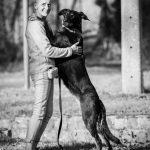 belle photo d'un maître et son chien