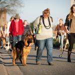 Groupe de promeneurs avec leurs chiens