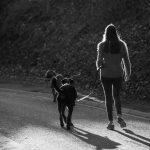 Maitre promenant son chien