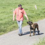 Promeneur avec un chien