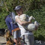 Julie Willems avec un chiot Golden Retriever