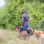 Julie Willems, un berger allemand et un malinois en balade canine