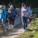 Balade canine Julie Willems