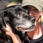 Moment d'amour entre un chien et sa maitresse