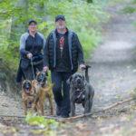 Trois chiens et leurs maitres
