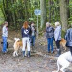 Balade canine avec Julie Willems