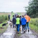 Balade canine Julie Willems à la campagne